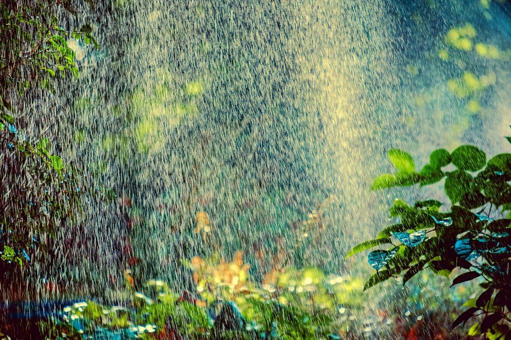 Smart Garden ví, kdy přijde déšť, a podle toho se zařídí