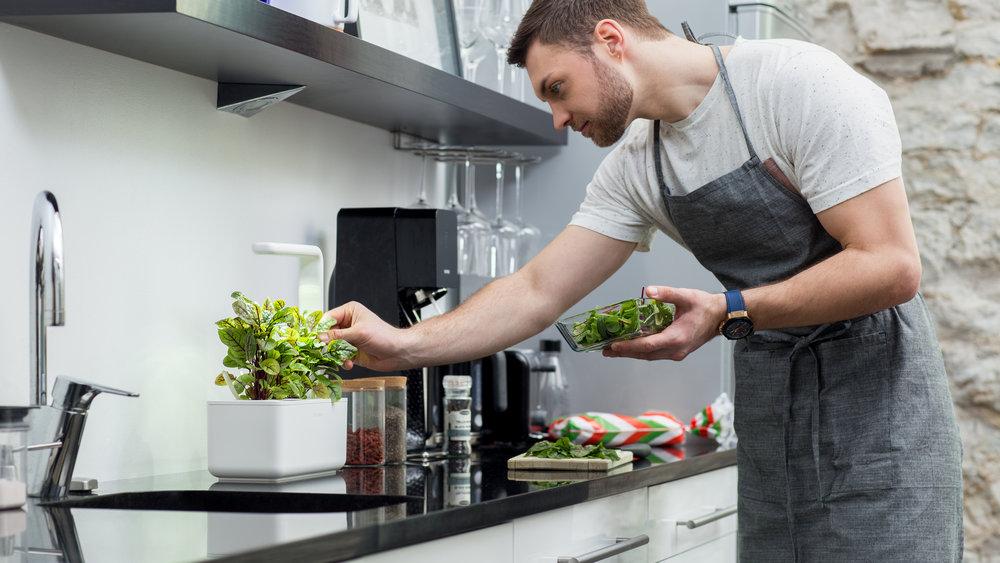 Chytrý květinář a kuchař