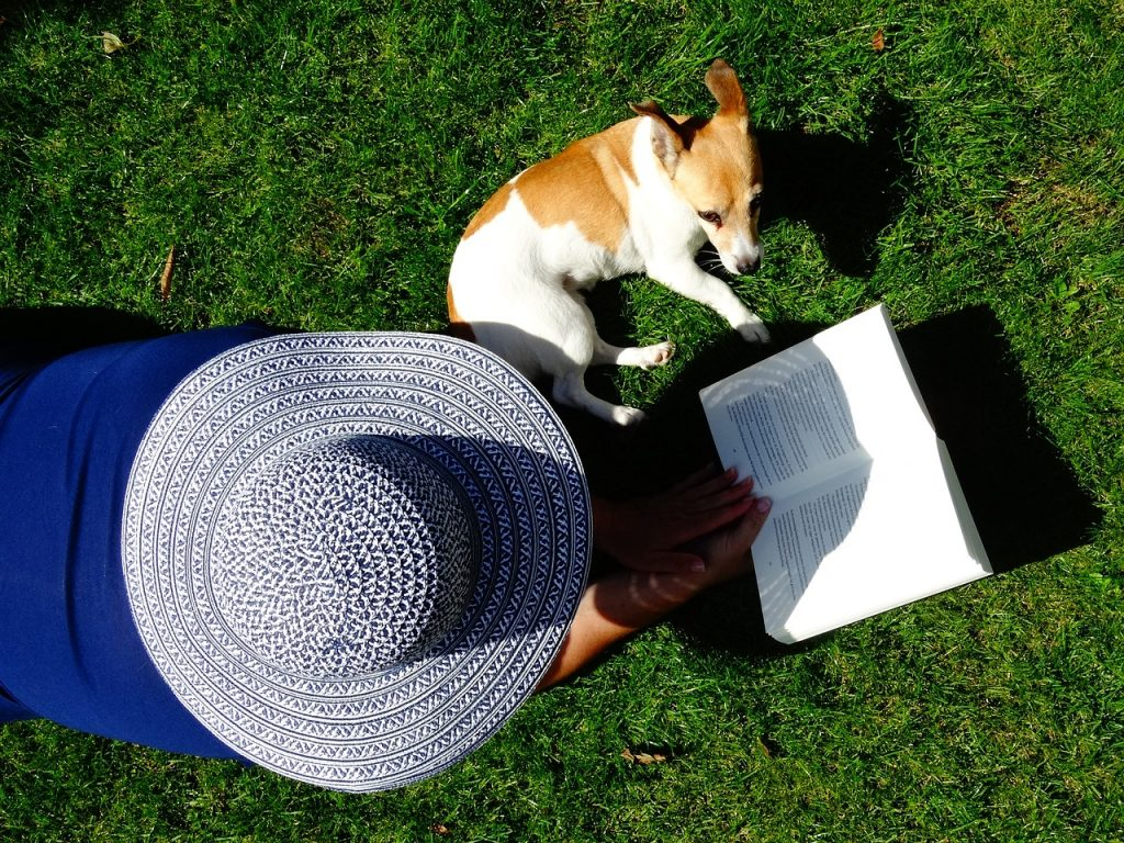 Čtenářka na posekaném trávníku