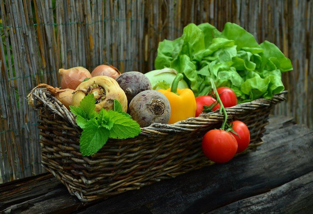 Úroda zeleniny